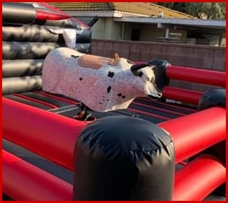 Mechanical Bull rental for childrens parties